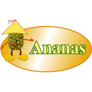 Bistro Ananas -  Erlangen